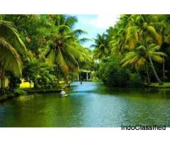 Munroe Island Backwaters |Kerala Backwaters Homestay | munroe island backwaters homestay