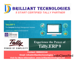 tally sales partner