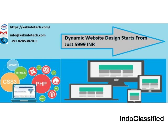 Affordable Dynamic Website Design Company in Delhi- kakinfotech