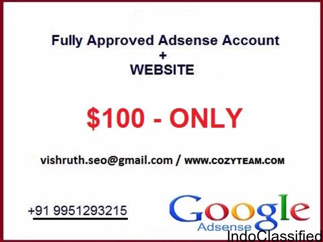 Get Fully Approved Adsense Account – Buy Adsense Account For Websites @ Cozyteam.com
