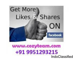 Cozyteam will provide 1000 permanent facebook likes