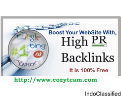 Cozyteam Will Create 100 Unique Backlinks From Pr5 And Above Websites