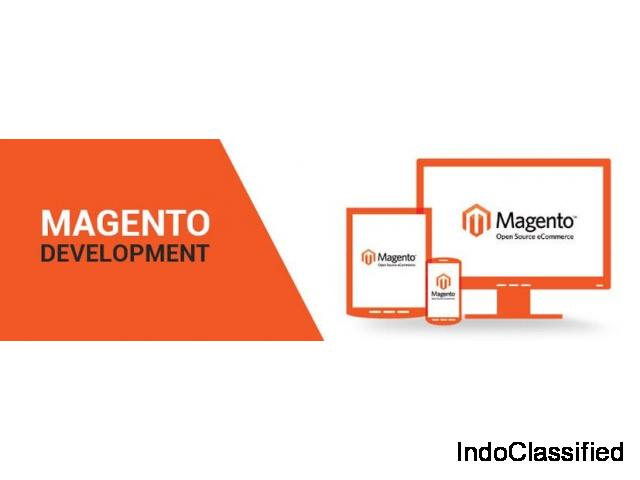 Looking for Magento Web Development Solutions