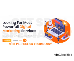 Being a professional SEO service provider in Delhi