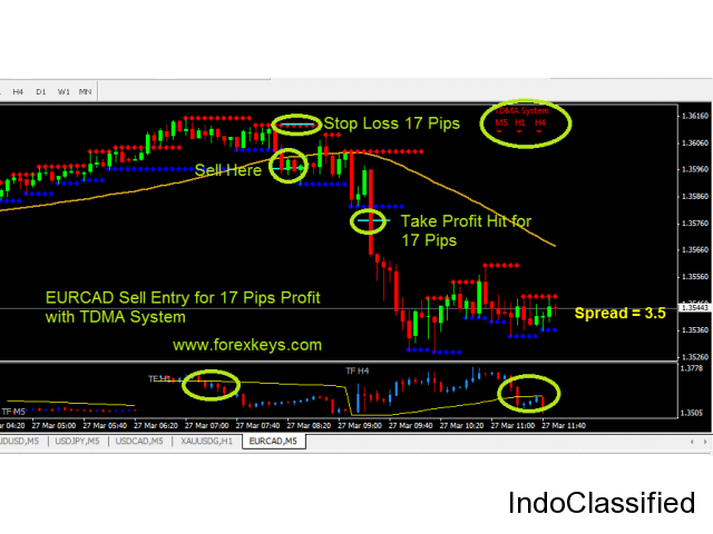 Free Forex Training in Visakhapatnam