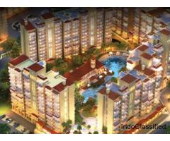 CHD Resortico 1 BHK Service Apartment In South Of Gurgaon