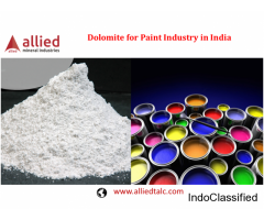 Dolomite for Paint Industry in India Allied Minerals Industries