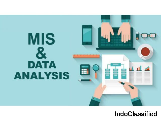 MIS & ADVANCED MS EXCEL PRACTICAL TRAINING INSTITUTE IN DELHI