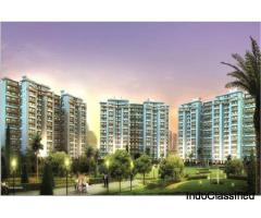 2 Bhk Luxury Apartments in Sector 91, Gurgaon - Maceo