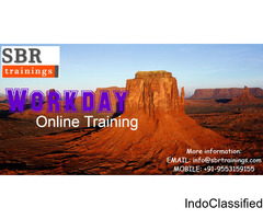 online workday training