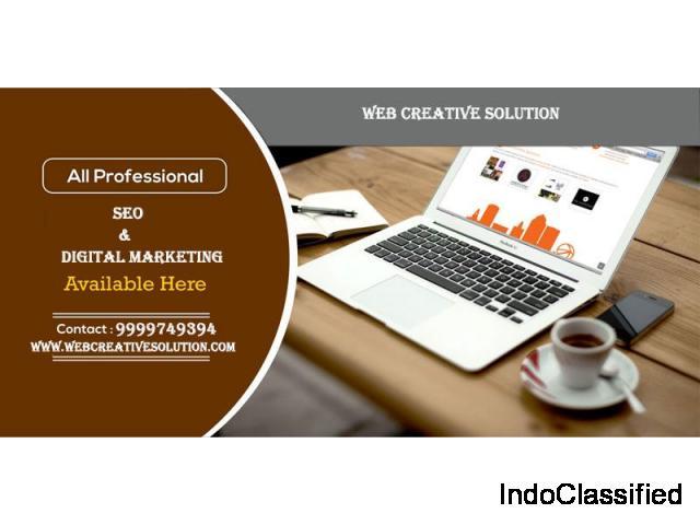 Search Engine Optimization Company in Delhi NCR