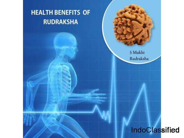 Health Benefits of Rudraksha