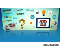Custom ecommerce Solutions for web design and development