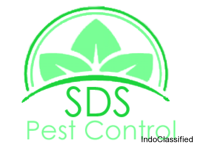 Pest control services in Pune