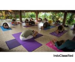 Karuna Yoga - Best Yoga Teacher Training Course and Certification in India