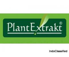 best homoeopathic medicine company in india - Plantextrakt