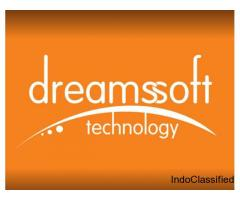 Dreams Soft Technology, Web site cheap prices Company in Jaipur