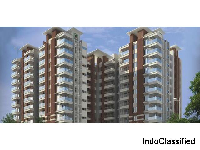Luxury 2 & 3 BHK Flats in JP Nagar starts at 62L