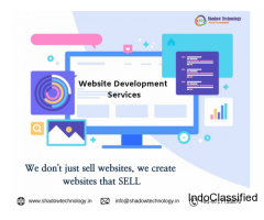 Hire Website Development Company in Gurgaon for your business