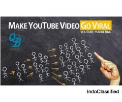 Get 1k+ Views on your Youtube Video in just $15
