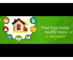 Pest Control Services Mumbai