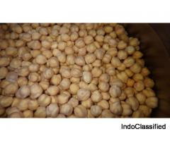 MEXICAN GARBANZO BEANS (CHICKPEAS)