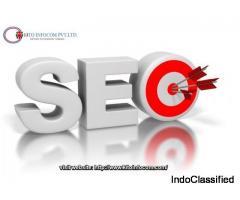 Seo solutions Delhi - Kitoinfocom.com