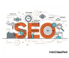 Best SEO Services In India/Dricki