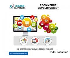 E-commerce Web Design Services in Delhi-NCR
