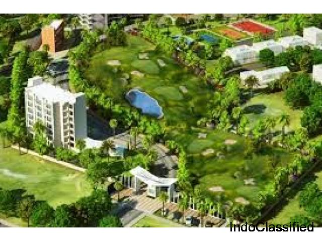 Top Golf course designers, Architects, Golf course architecture firms in India