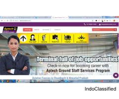 Airport Terminal Operations Management course chandigarh