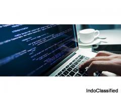 Best Software Development Services In Noida