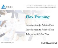 Flex Training in Mumbai Pune Bangalore Hyderabad India.