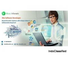 Bluez Infomatic is a leading software Developer in Tirupur