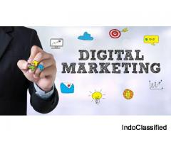 Digital Marketing Course In Rohtak-Dricki.com