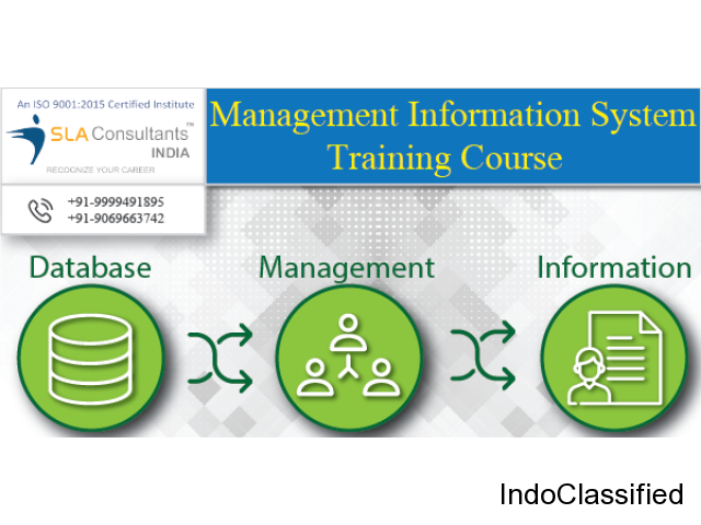 Best MIS Course in Gurgaon | MIS Training in Gurgaon | SLA Consultants Gurgaon