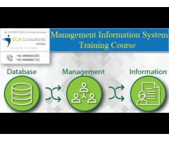 Best MIS Course in Gurgaon | MIS Training in Gurgaon | SLA Consultants Gurgaon