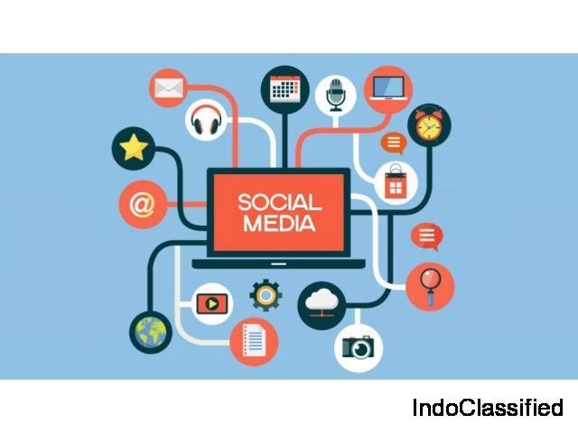 Social Media Marketing Service-Instant Result