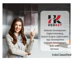 Best Website Designing & Development Company in Delhi