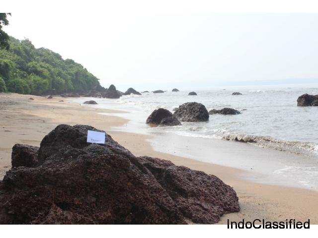 Goa Tour Package: - Get Ready For An Exotic Holiday