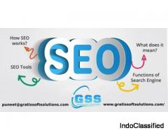 Best SEO company in chandigarh