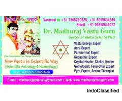 Best Vastu Expert in India