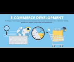 Infograins For Best Ecommerce Website Development