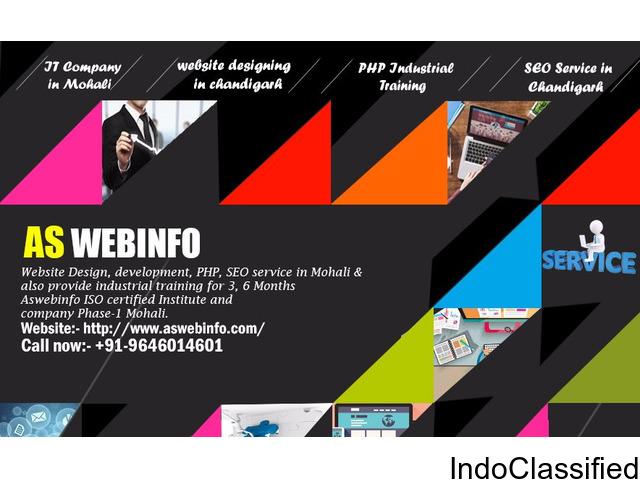Website designing in Chandigarh