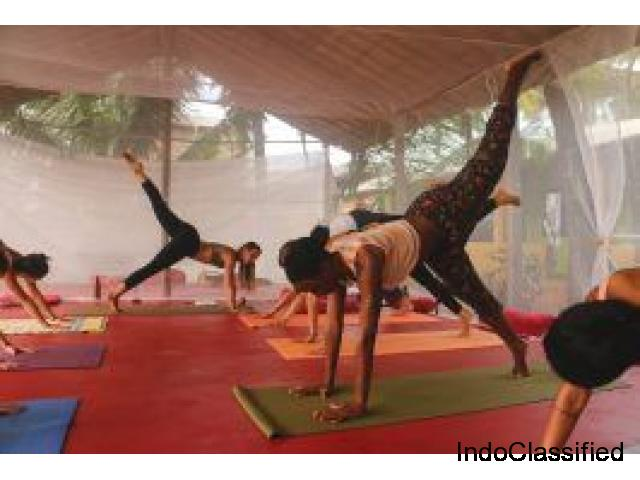 Best Yoga Teacher Training in the World