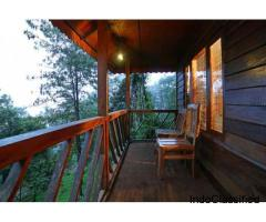 Tree House Resort In Munnar