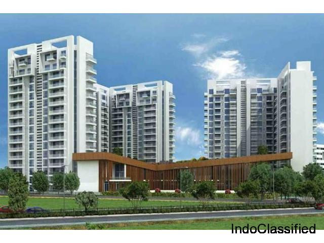 Ambience Creacions 2 BHK @ 1.42 Lacs Onwards In Gurgaon Sector 22
