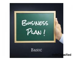 Business Plan Basic Package