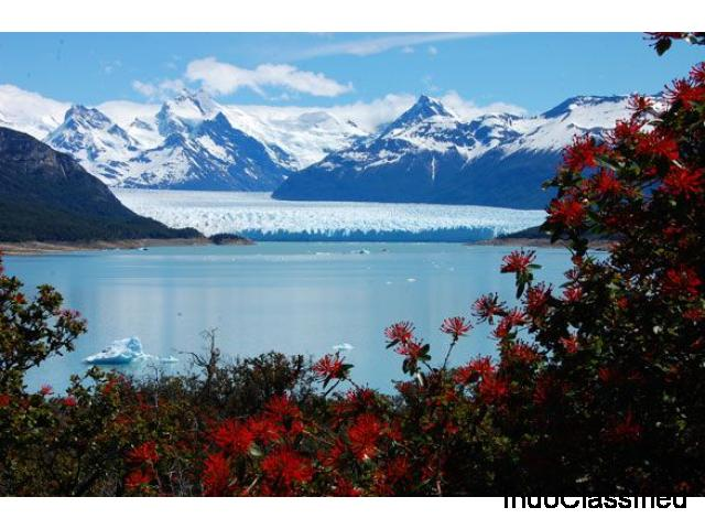 Explore South America Tours