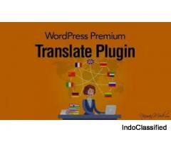 WP Google Translate – WordPress Premium Translate Plugin